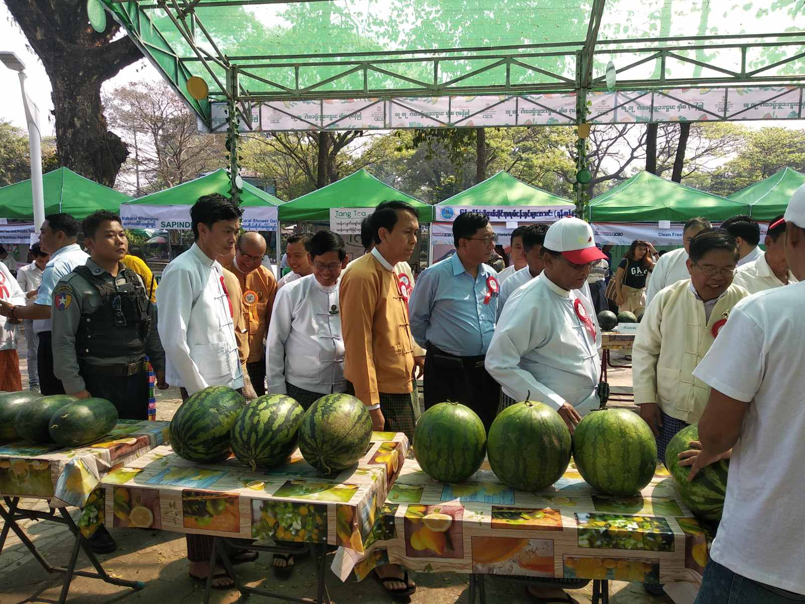 1st Myanmar Melon Festival 2020 (Photo 7)