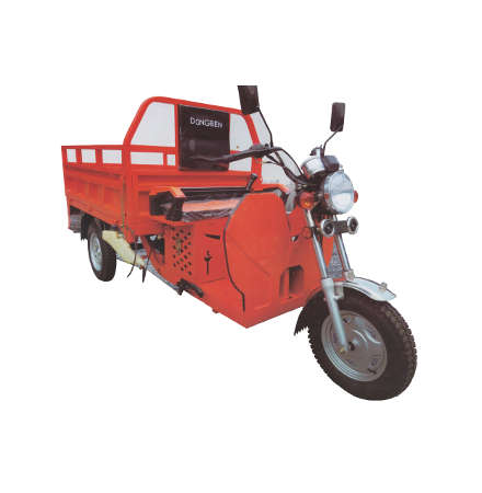 Dongben Brand Tricycle (DB125ZH -125CC)