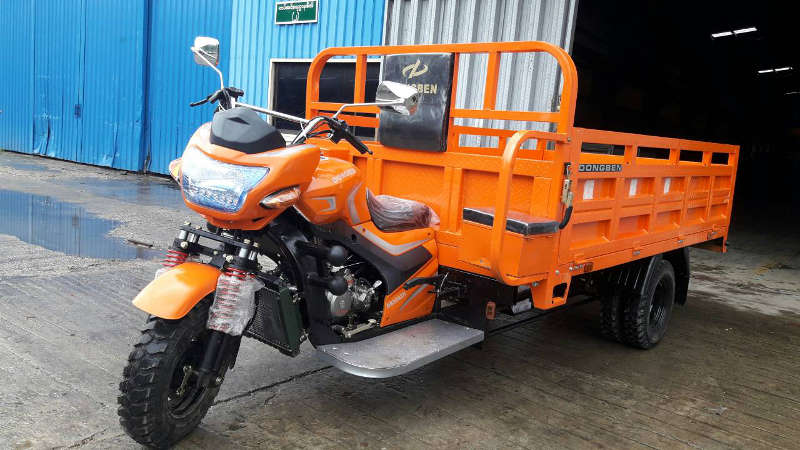 Dongben Brand Tricycle (DB250ZH-250CC)(8 Feet)