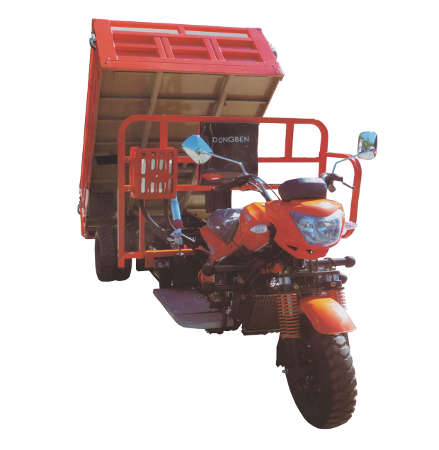 Dongben Brand Tricycle Tipper (DB300ZH Plus-300CC)
